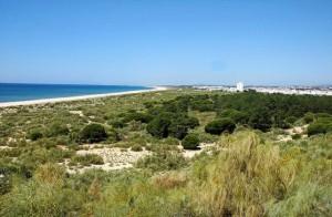 playa-alagoa6