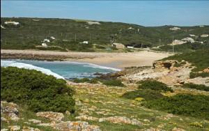 playa-ingrina3
