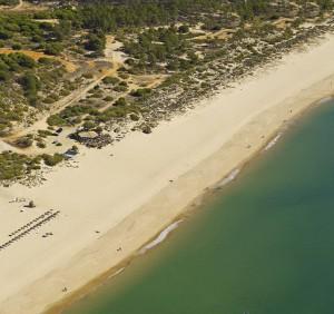 playa-verde5