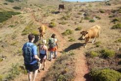 Walkin'Sagres, senderismo guiado por la Costa Vicentina