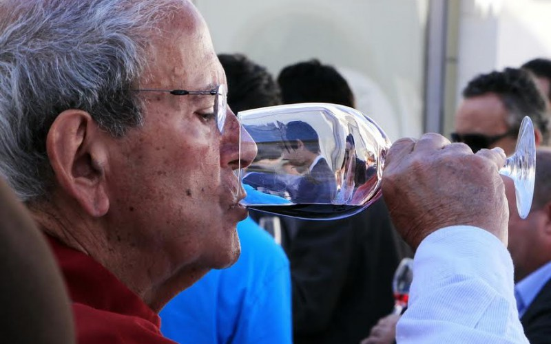 Los vinos de Silves, premiados en el IX Concurso de Vinos del Algarve