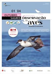 festival-aves1