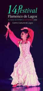 flamenco-lagos1