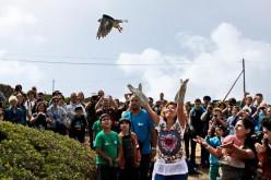Festival de las Aves y la Naturaleza 2015, un evento único con más de 200 actividades
