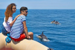 Buceo, surf, senderismo y paseos en barco, en la Algarve Nature Week