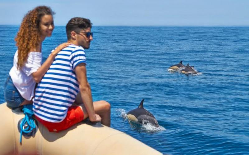 Lagos, escenario del día gratuito de la Algarve Nature Week