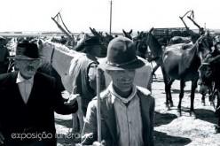 Una exposición recorre los mercados del Algarve a lo largo del tiempo