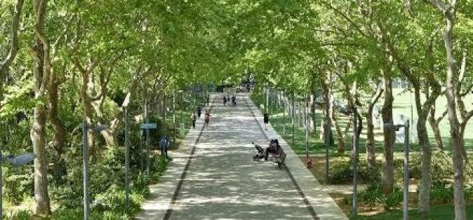 Yoga, Skate Park y poesía, en el Parque Municipal de Loulé