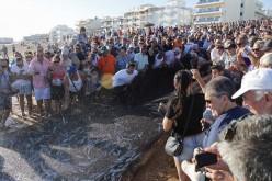 Los sabores del mar y la música, protagonistas en el Día del Pescador