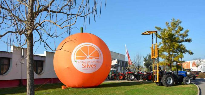 La naranja volverá a ser protagonista en Silves