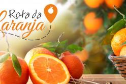 Una 'Ruta de la Naranja' recorrerá Silves