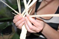 El arte de trenzar las palmas