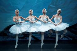 El Russian Classical Ballet lleva a Lagoa 'El Lago de los Cisnes'