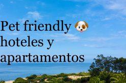 Viaja con tu mascota. Pet friendly hoteles y apartamentos en el Algarve