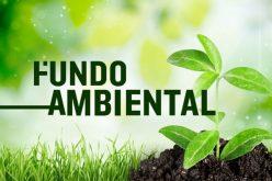 Loulé organiza un taller sobre adaptación de los Espacios Verdes Urbanos