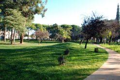 «Vámonos… al parque» promueve actividades en Loulé