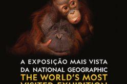 Joel Sartore expõe com selo da National Geographic em Vilamoura