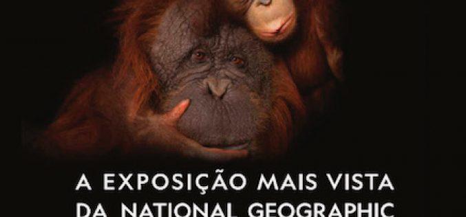 Joel Sartore expone con sello de National Geographic en Vilamoura