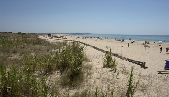 El cordón dunar Meia Praia va a ser rehabilitado