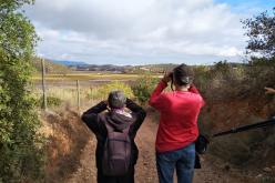 Lagoa promoveu caminhada à descoberta da Avifauna do rio Arade