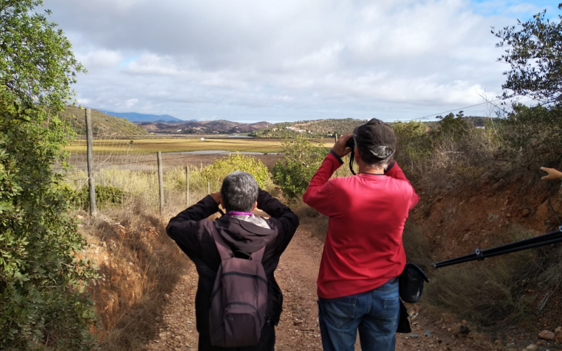Lagoa promueve la caminata para descubrir la Avifauna del río Arade