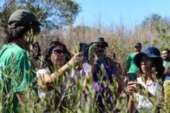 El X aniversario de RIAS se celebró con actividades en la naturaleza