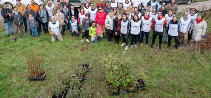 Voluntarios plantan dos mil árboles en la Sierra de Monchique