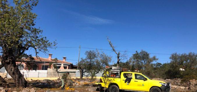 Bomberos forestales proceden con trabajos de prevención de incendios rurales