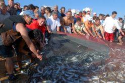 Quarteira cancela la celebración del Día del Pescador