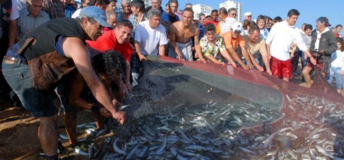 Celebrações do dia do pescador em Quarteira canceladas