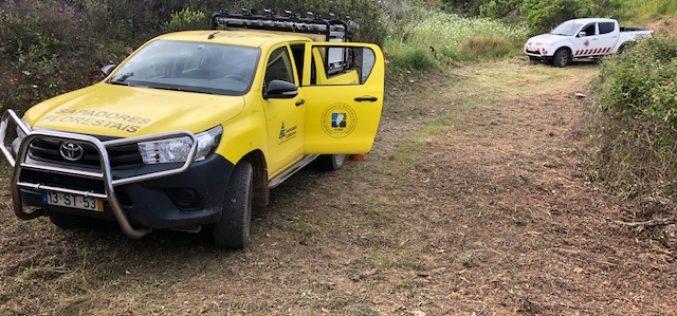 Prevenção de incêndios rurais prossegue em São Brás de Alportel