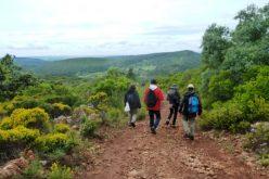 Loulé lanza el reto a la población en las celebraciones del Día Internacional de la Biodiversidad