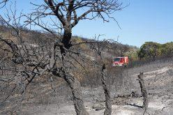 Lagos apoya la constitución del Dispositivo especial de lucha contra incendios rurales 2020