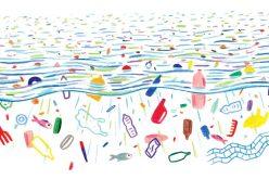 Loulé celebra el día del medio ambiente y los océanos