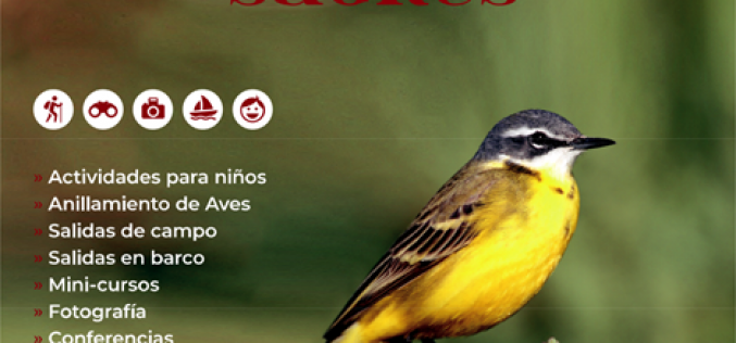 El Festival de Observación de Aves y Actividades en la Naturaleza está de regreso en Sagres
