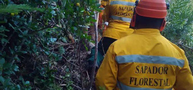 Alcoutim apoia o desenvolvimento de ações de proteção e prevenção de fogos florestais