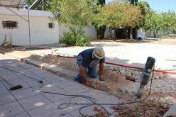 Castro Marim começa ano letivo com melhorias no parque escolar