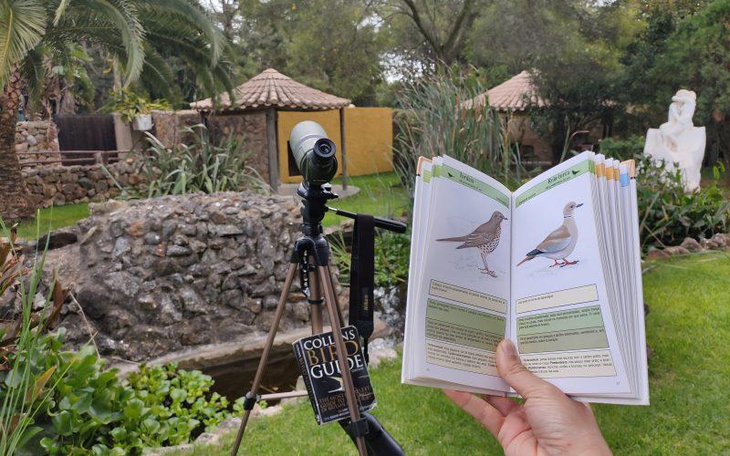 Zoológico de Lagos invita a participar en el curso de Observación de Aves