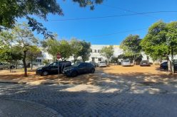 Faro tendrá su primera «Calle viva»