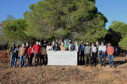 El emprendimiento Terras de Verdelago invierte en la forestación de especies nativas