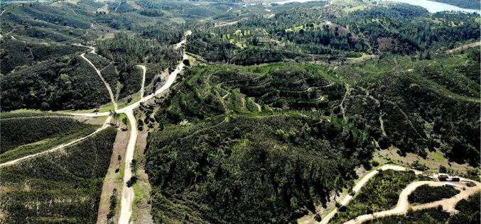 Silves tendrá áreas integradas de gestión de paisajes