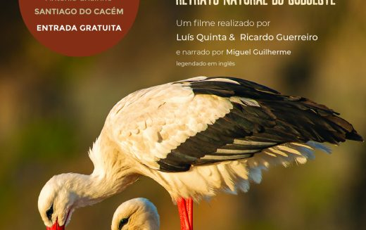 La Costa de las Cigüeñas – Retrato natural del Suroeste