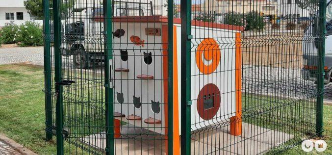 Silves coloca el primer equipo para felinos en Algoz